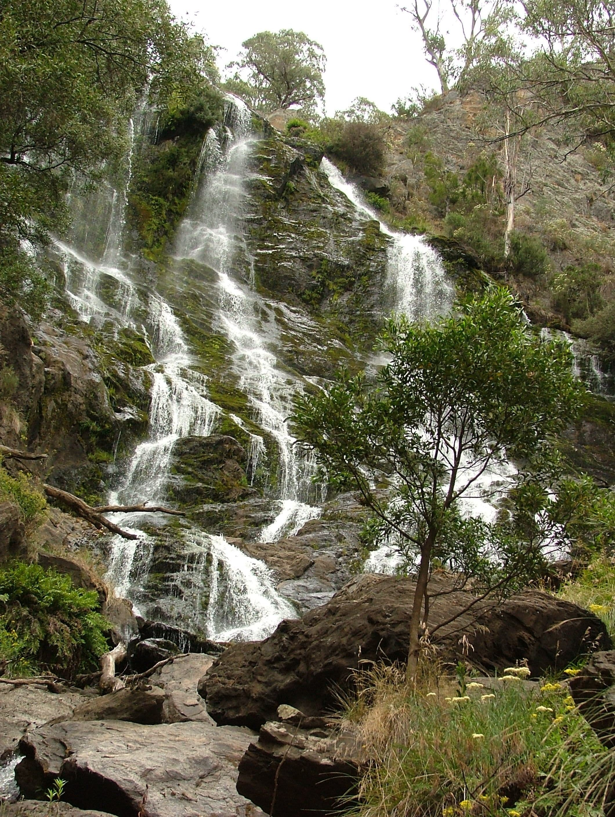 Buddong Falls Walking Track - Accommodation Sunshine Coast