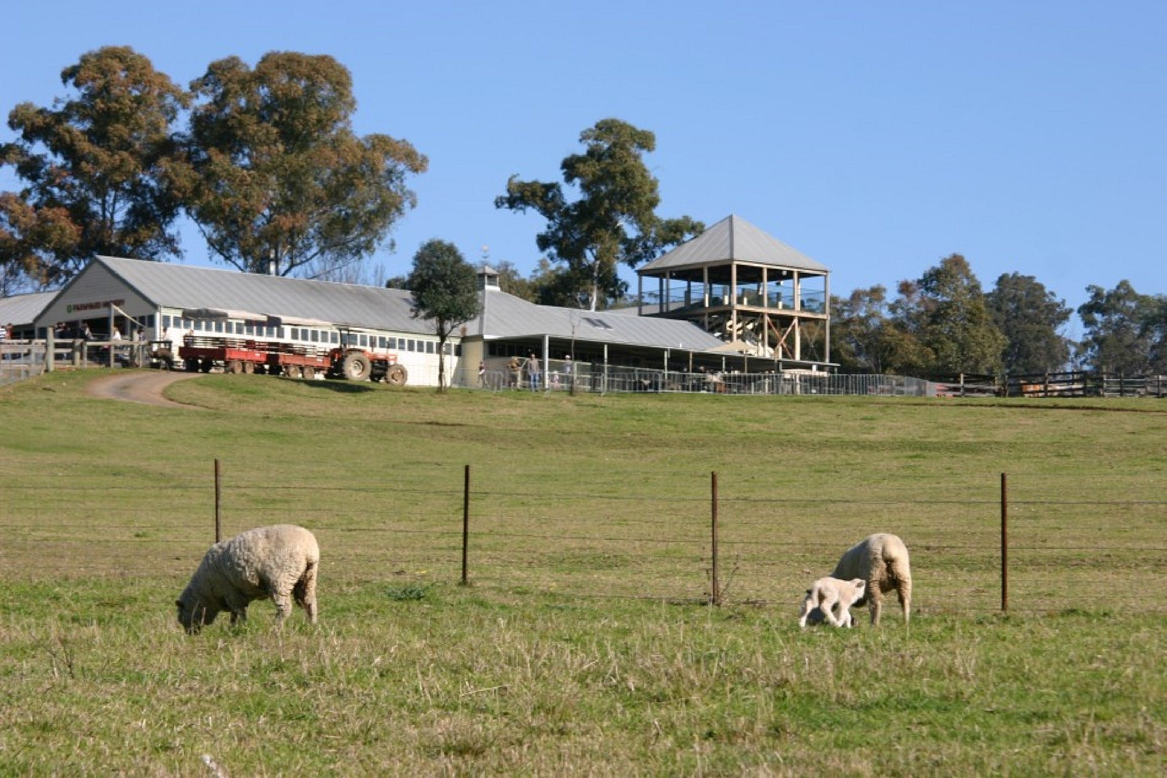Calmsley Hill City Farm - Accommodation Sunshine Coast