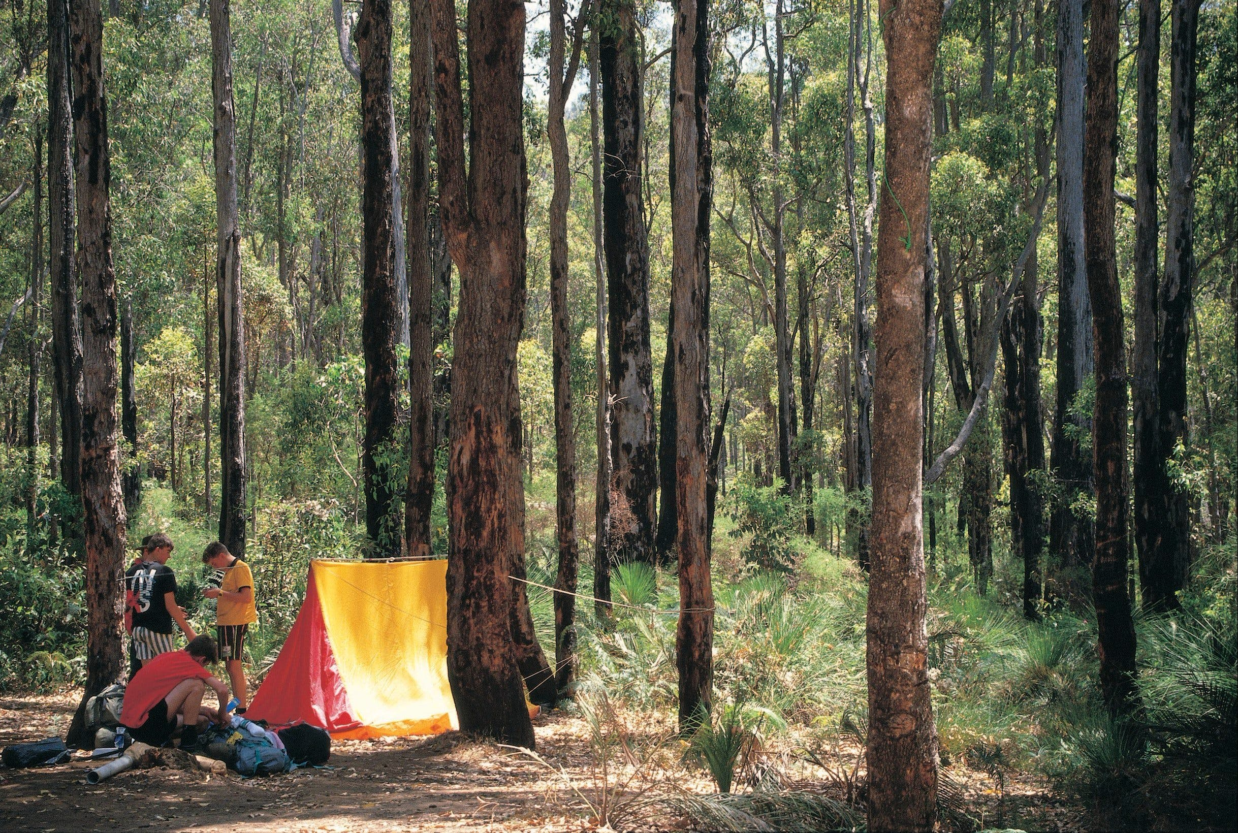 Dwellingup - Accommodation Sunshine Coast