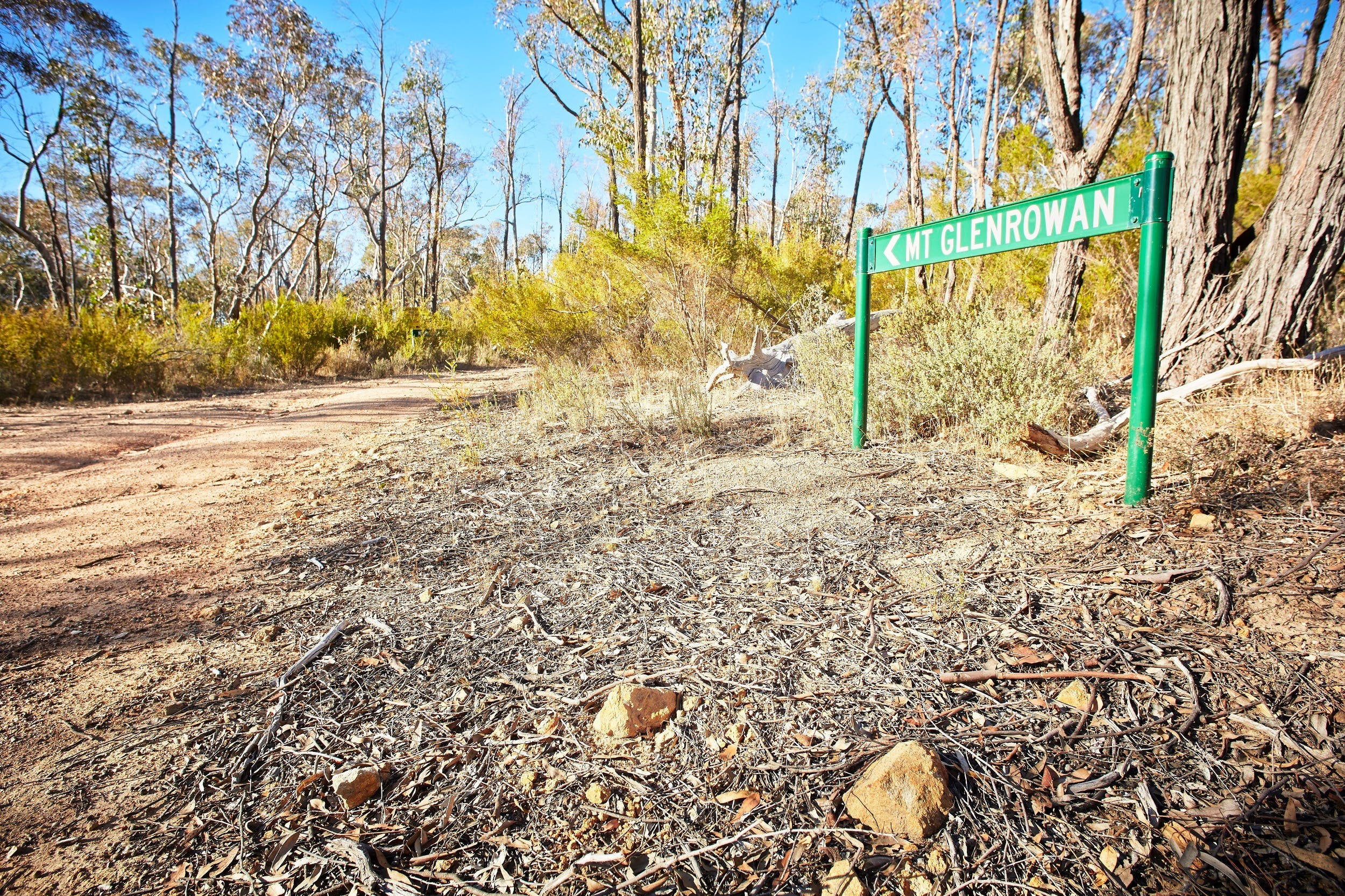 Mt Glenrowan Lookout Walk - Accommodation Sunshine Coast