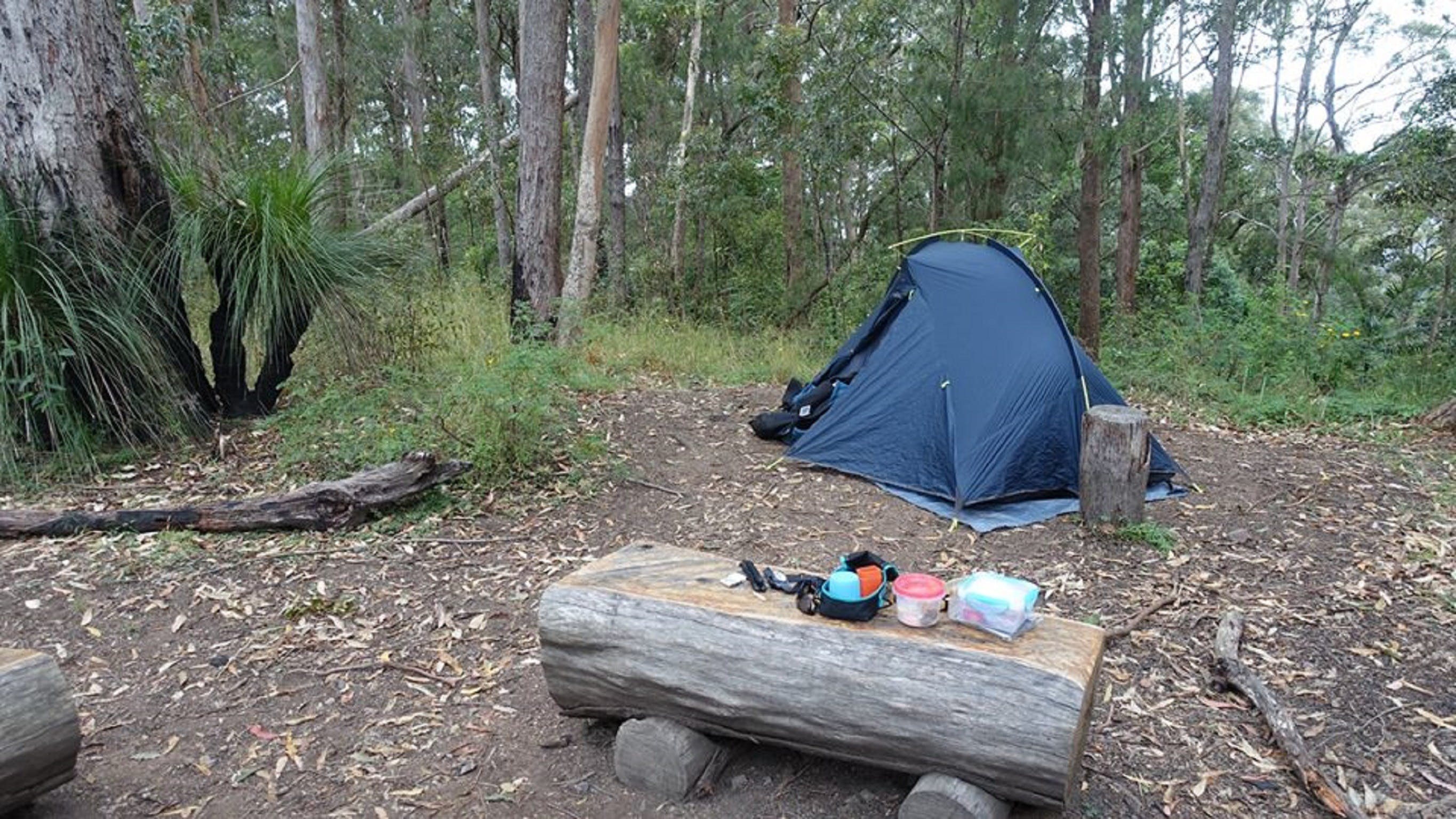 Northbrook Mountain Bush Camp - Accommodation Sunshine Coast
