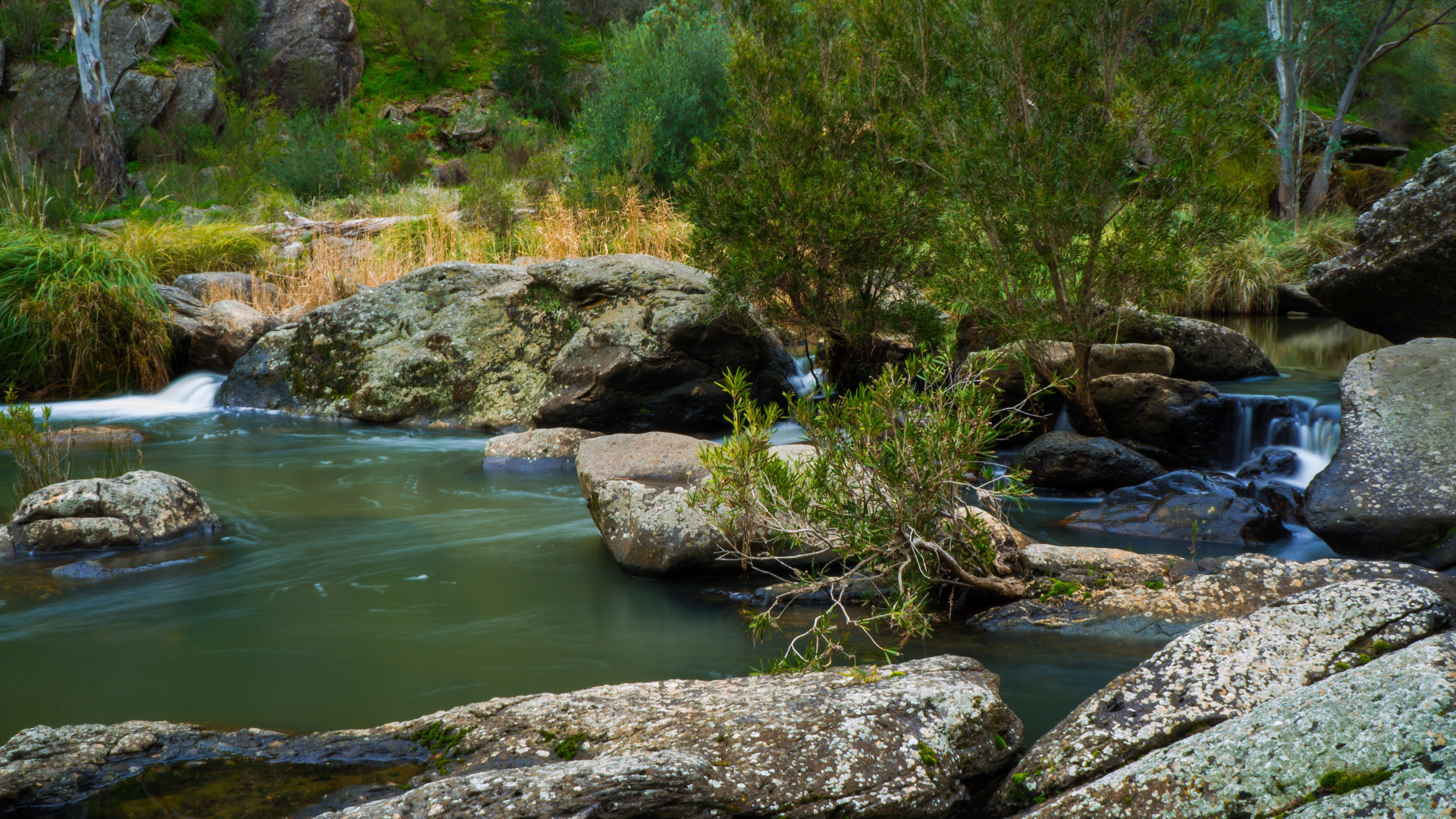 Onkaparinga River National Park - Accommodation Sunshine Coast