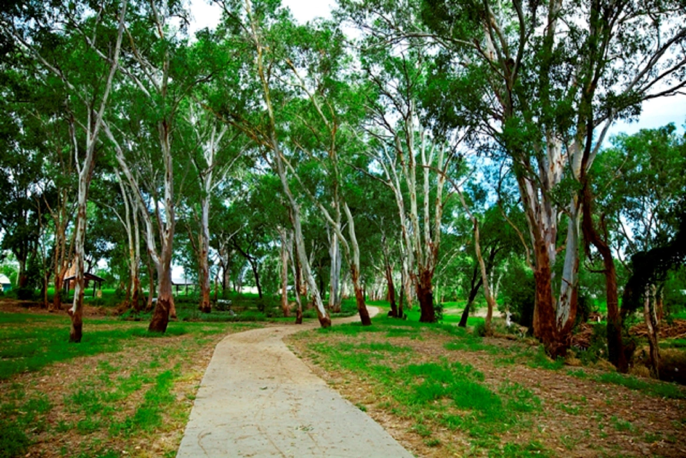 Adungadoo Pathway - Accommodation Sunshine Coast