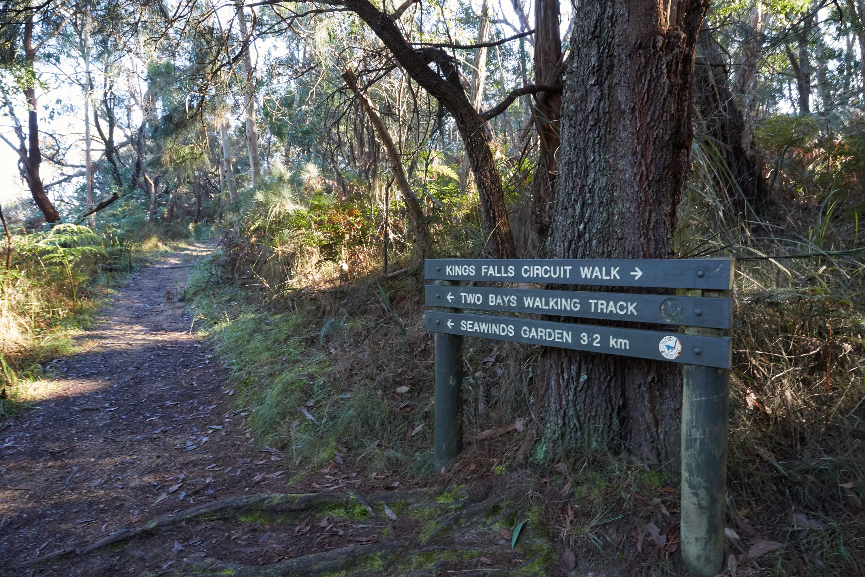 Arthurs Seat to Kings Falls Walk - Accommodation Sunshine Coast