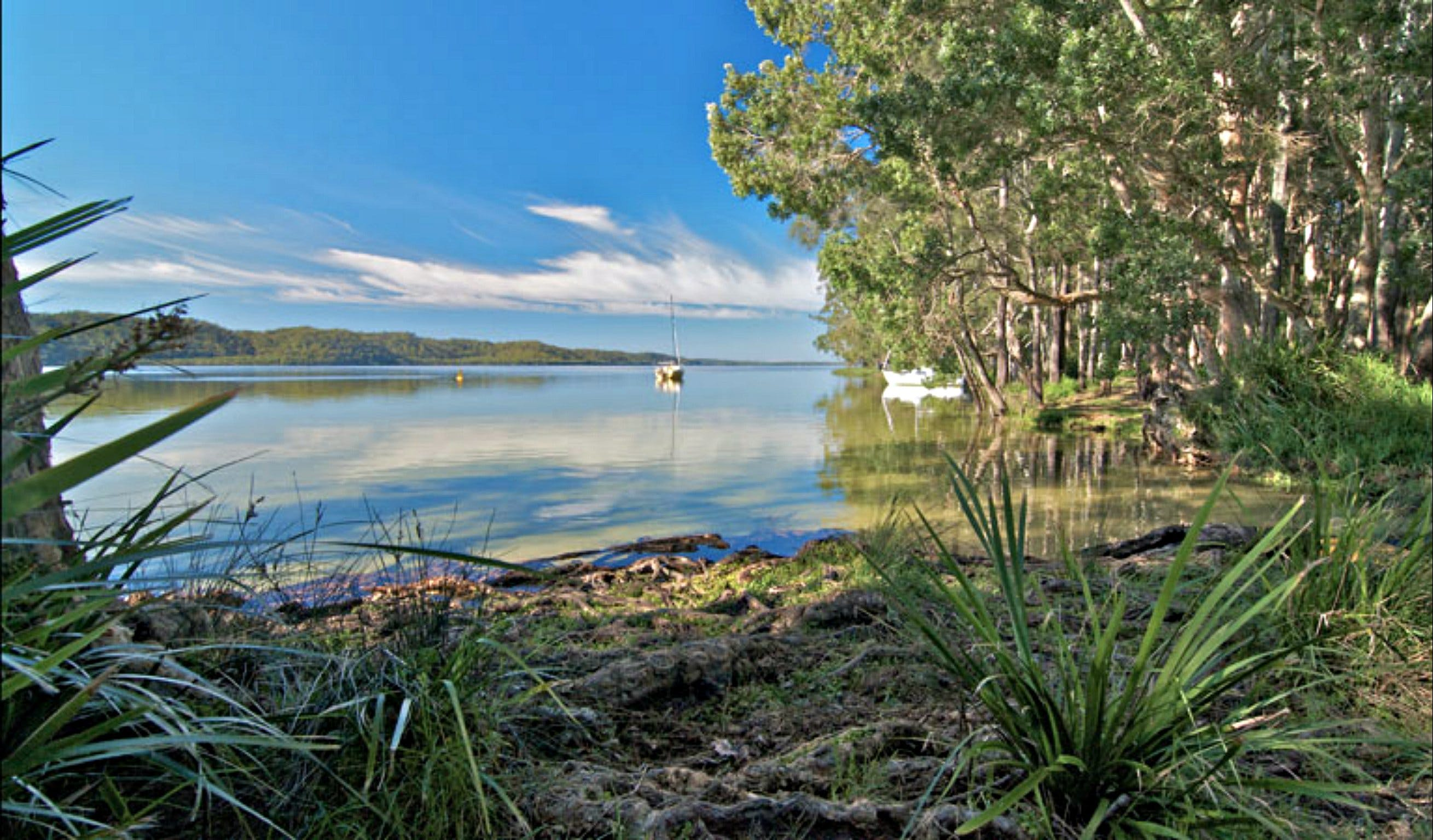 Black Oaks Picnic Area - Accommodation Sunshine Coast