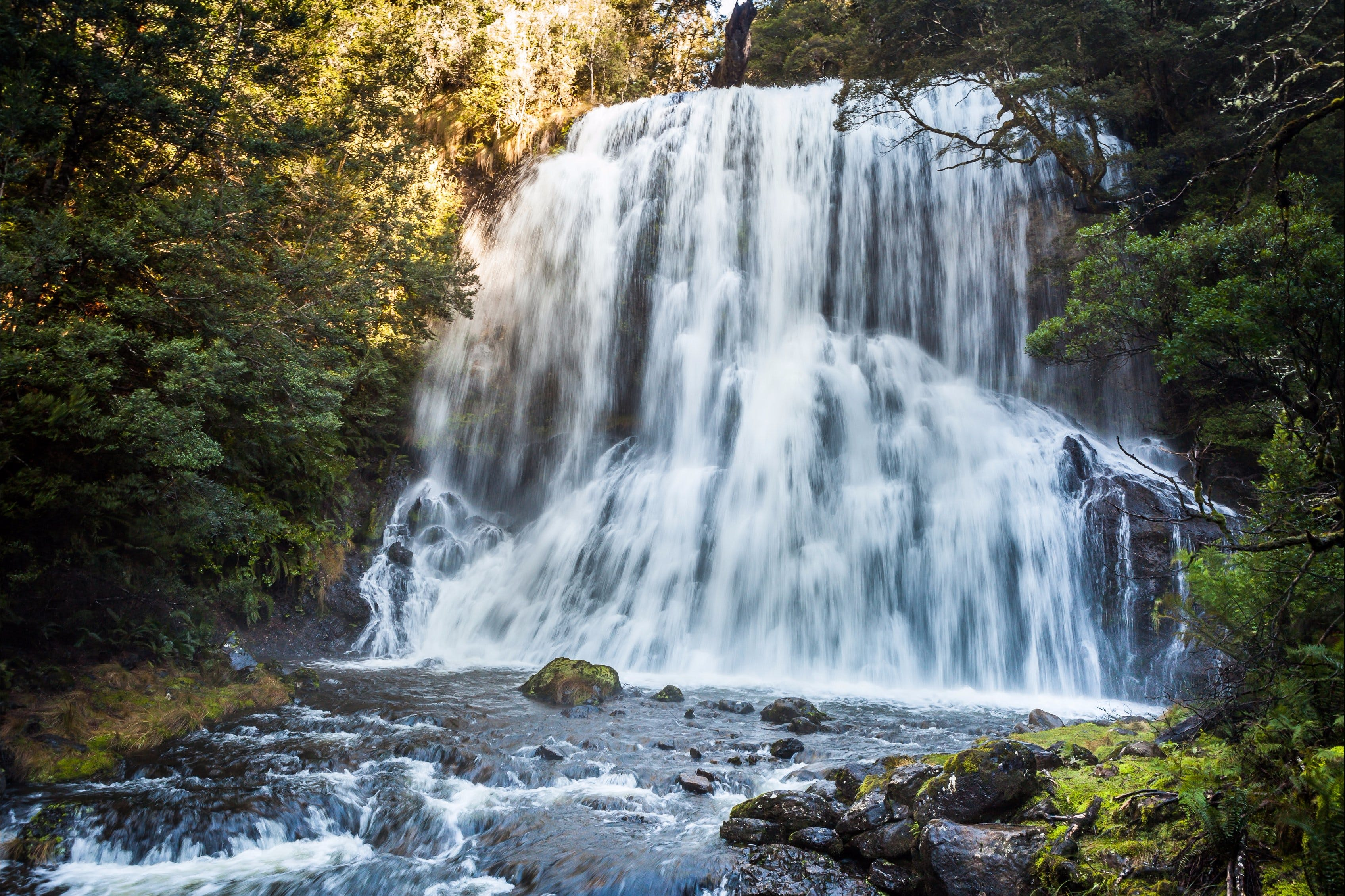 Bridal Veil Champagne and No Name Falls - Accommodation Sunshine Coast