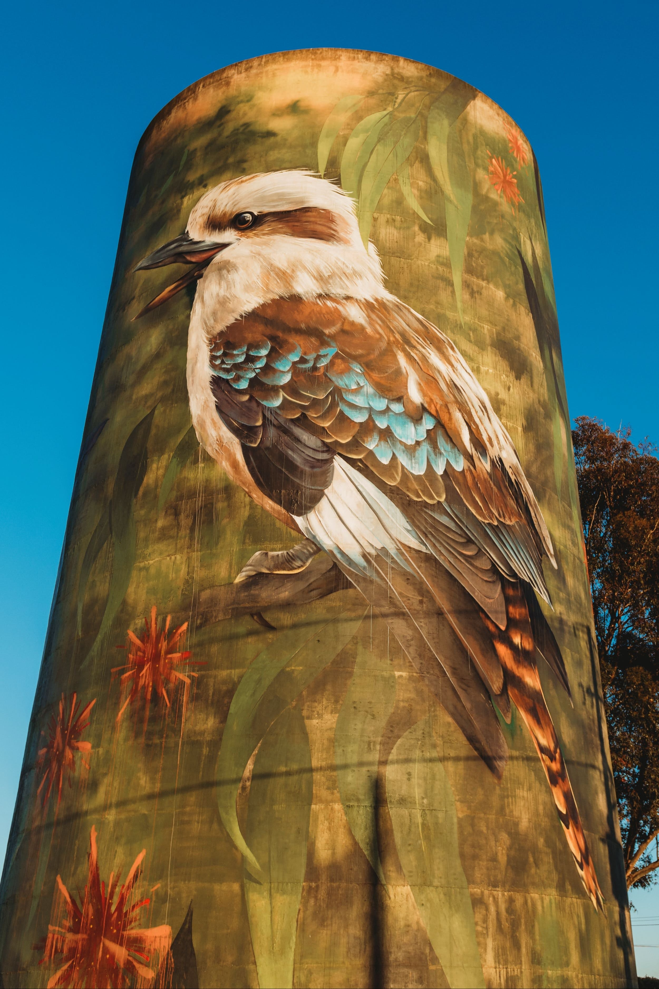 Deniliquin Water Tower Mural - Accommodation Sunshine Coast