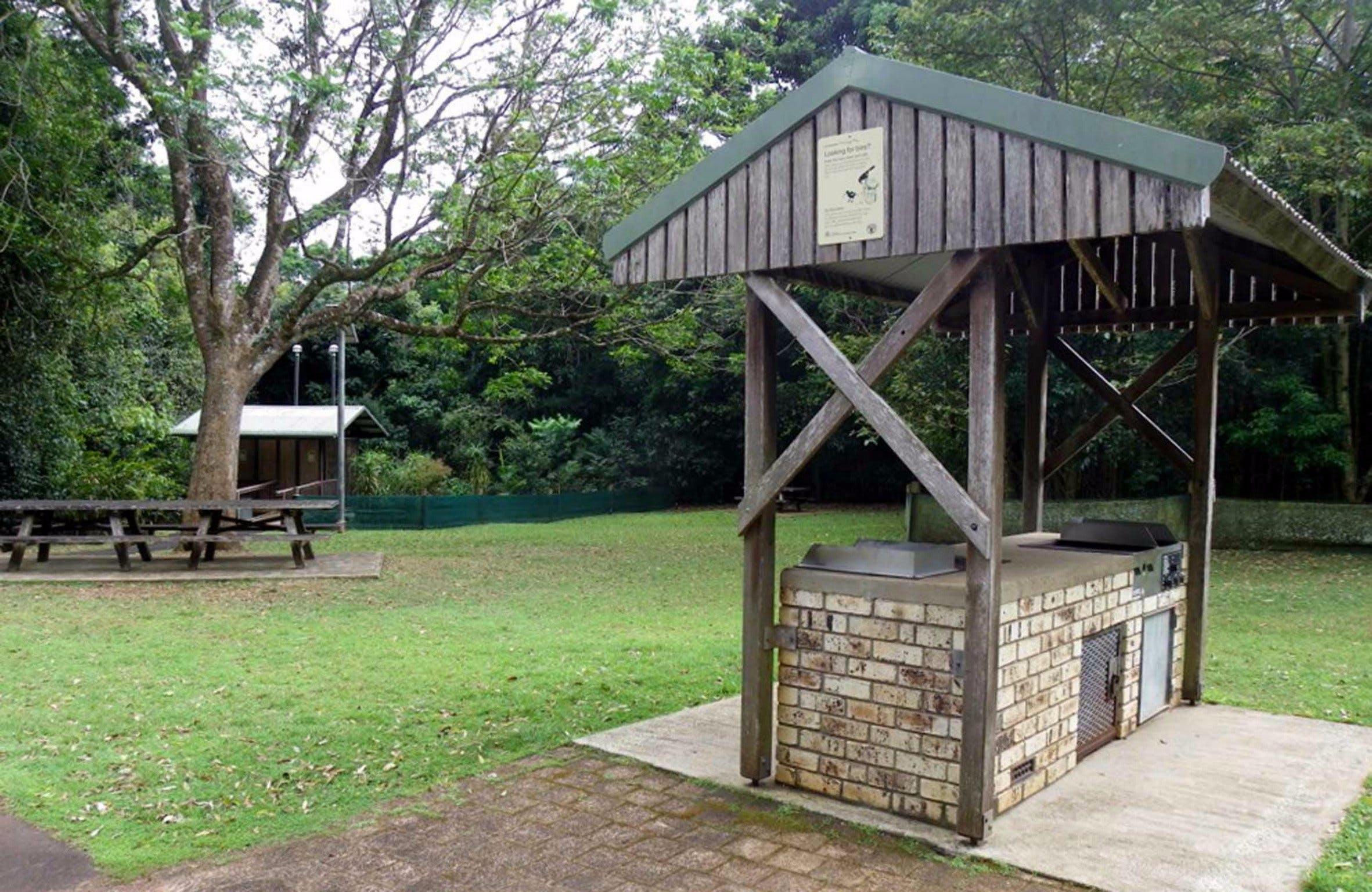 Victoria Park picnic area - Accommodation Sunshine Coast