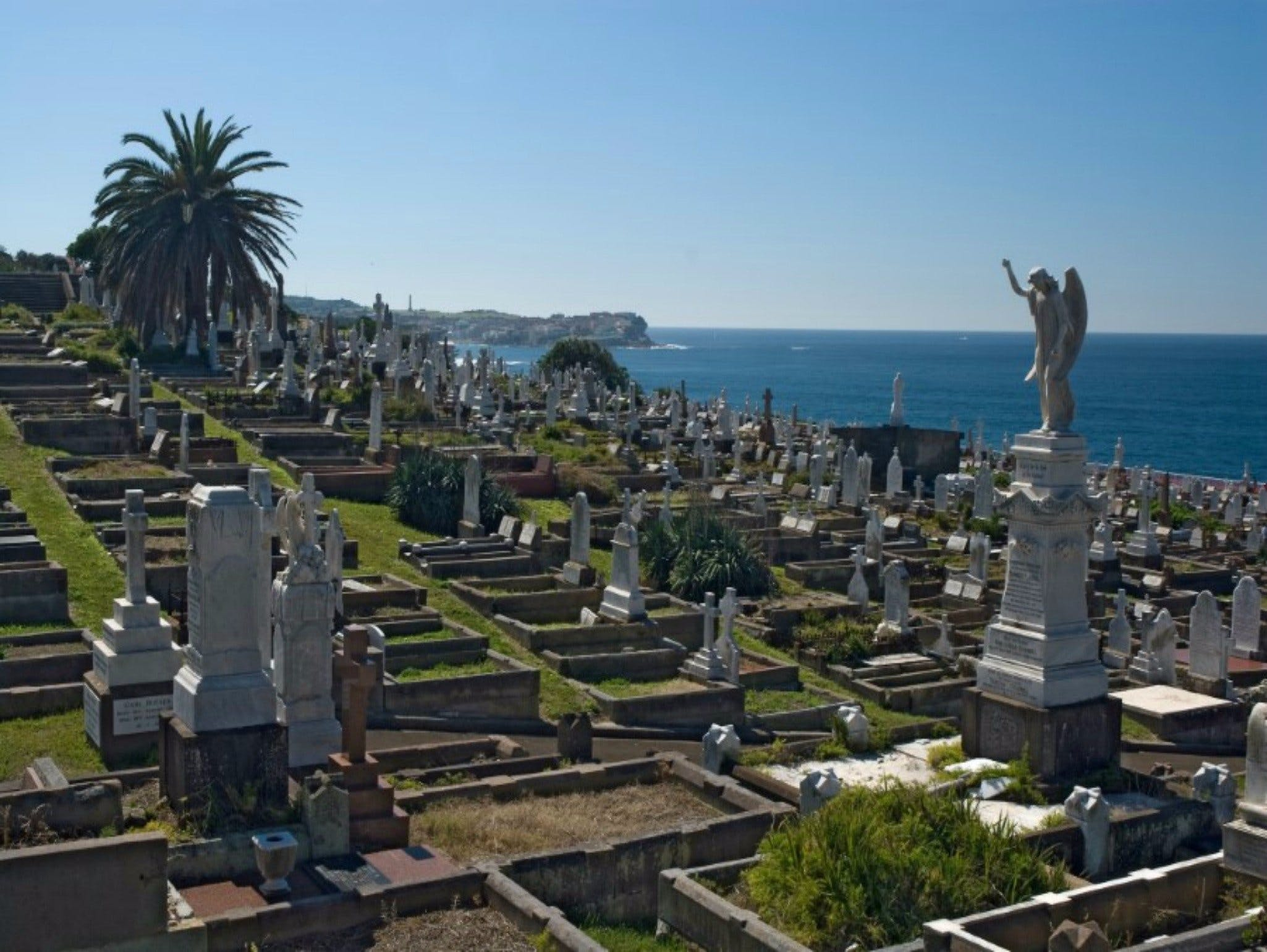 Waverley Cemetery - Accommodation Sunshine Coast