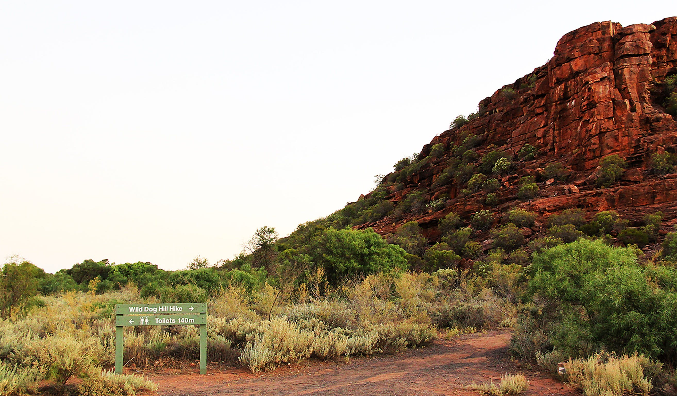 Whyalla Conservation Park - Accommodation Sunshine Coast