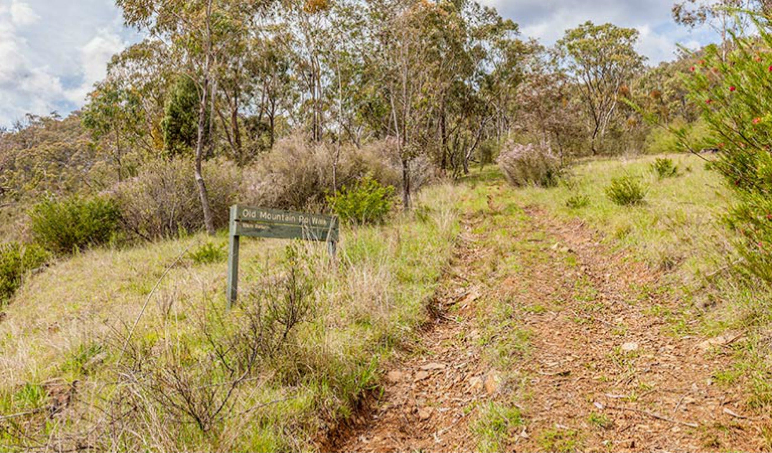 Old Mountain Road Walking Track - Accommodation Sunshine Coast