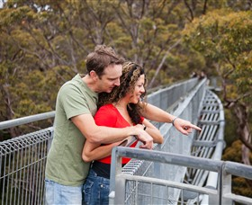Valley of the Giants Tree Top Walk - Accommodation Sunshine Coast