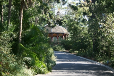 Royal Botanic Gardens Victoria - Accommodation Sunshine Coast