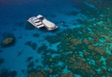 Great Adventures Reef and Green Island Cruises - Accommodation Sunshine Coast