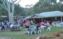 Bush Shack Brewery - Accommodation Sunshine Coast