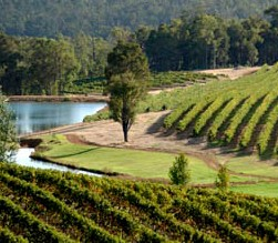 Brookhampton Estate Vineyard - Accommodation Sunshine Coast