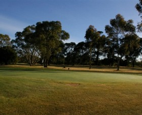 Winchelsea Golf Club - Accommodation Sunshine Coast