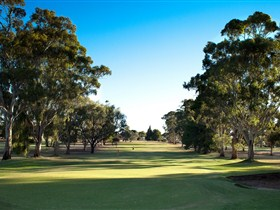 Loxton Golf Club - Accommodation Sunshine Coast