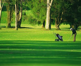 Foster Golf Club - Accommodation Sunshine Coast