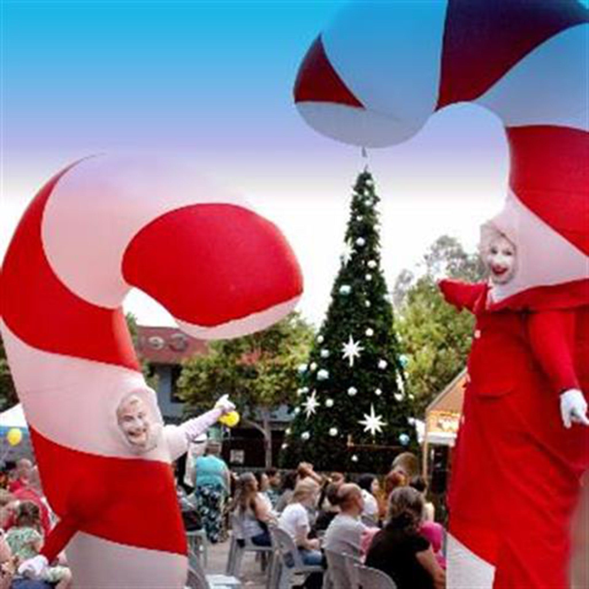 Blacktown Christmas Light Up Concert - Accommodation Sunshine Coast