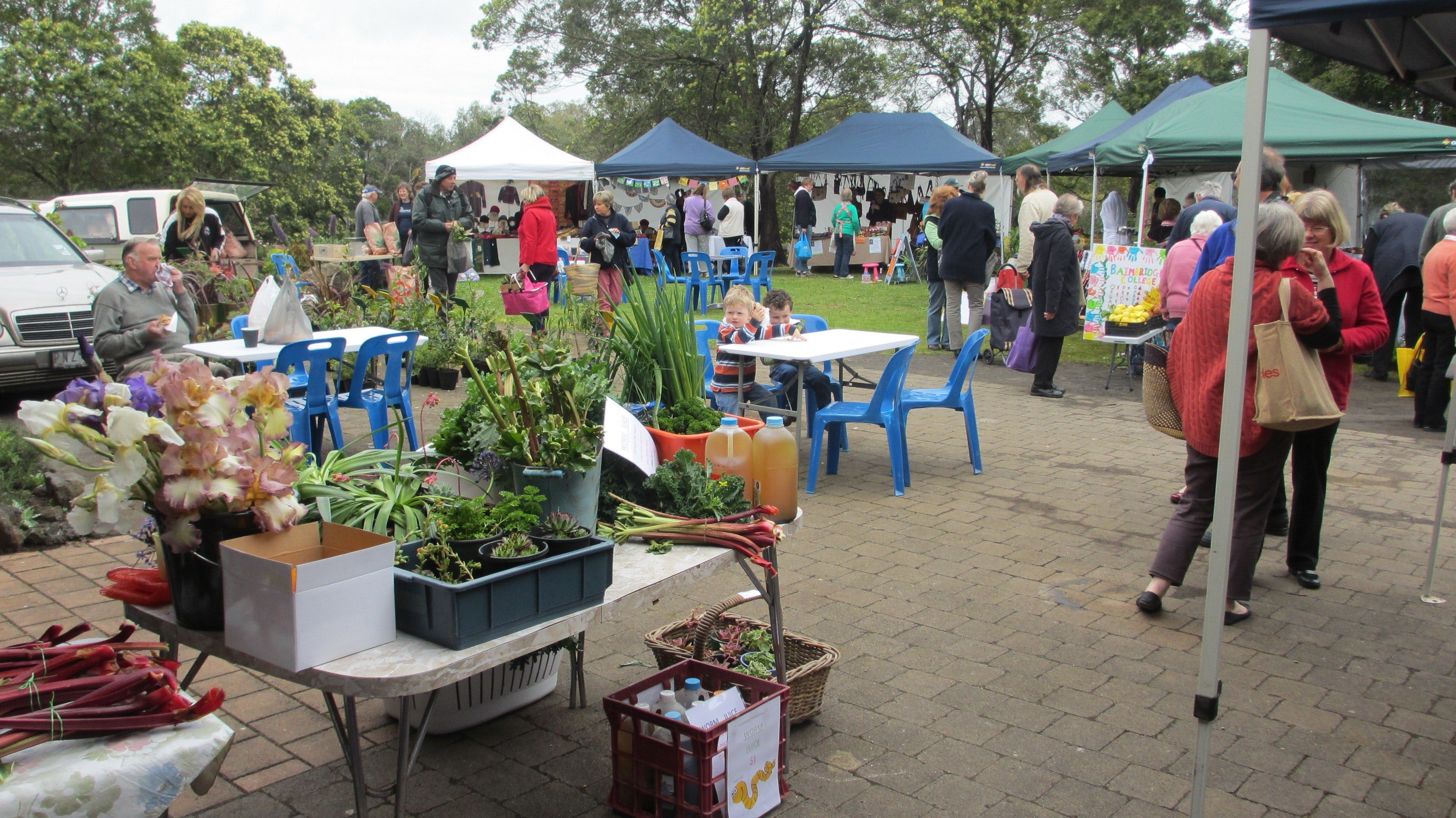 Hamilton HIRL Farmers and Craft Market - Accommodation Sunshine Coast