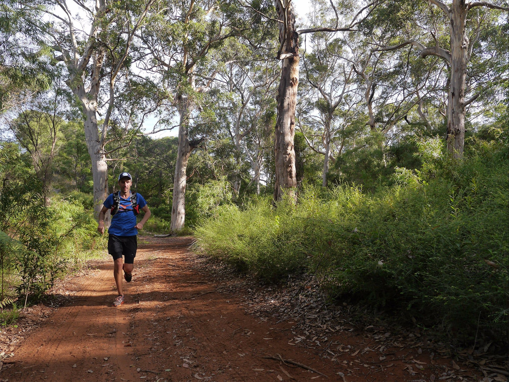 Margaret River Ultra Marathon - Accommodation Sunshine Coast