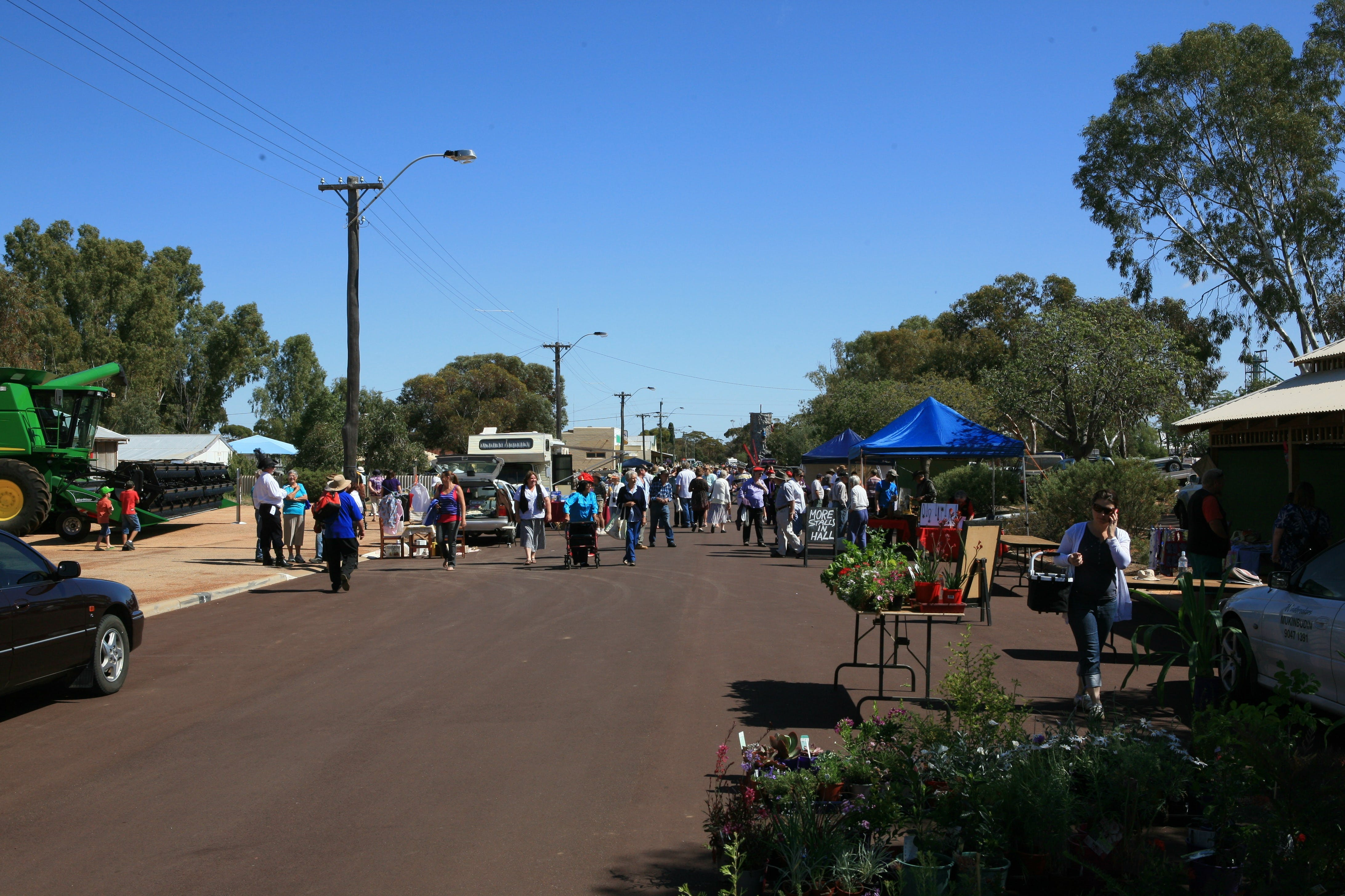 Nungarin Markets - Accommodation Sunshine Coast