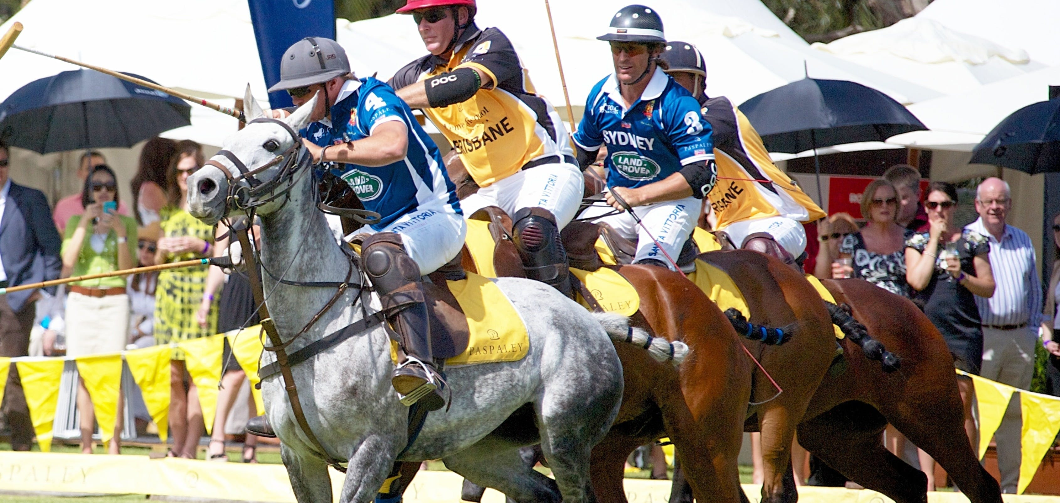 Land Rover Polo in the City Brisbane - Accommodation Sunshine Coast