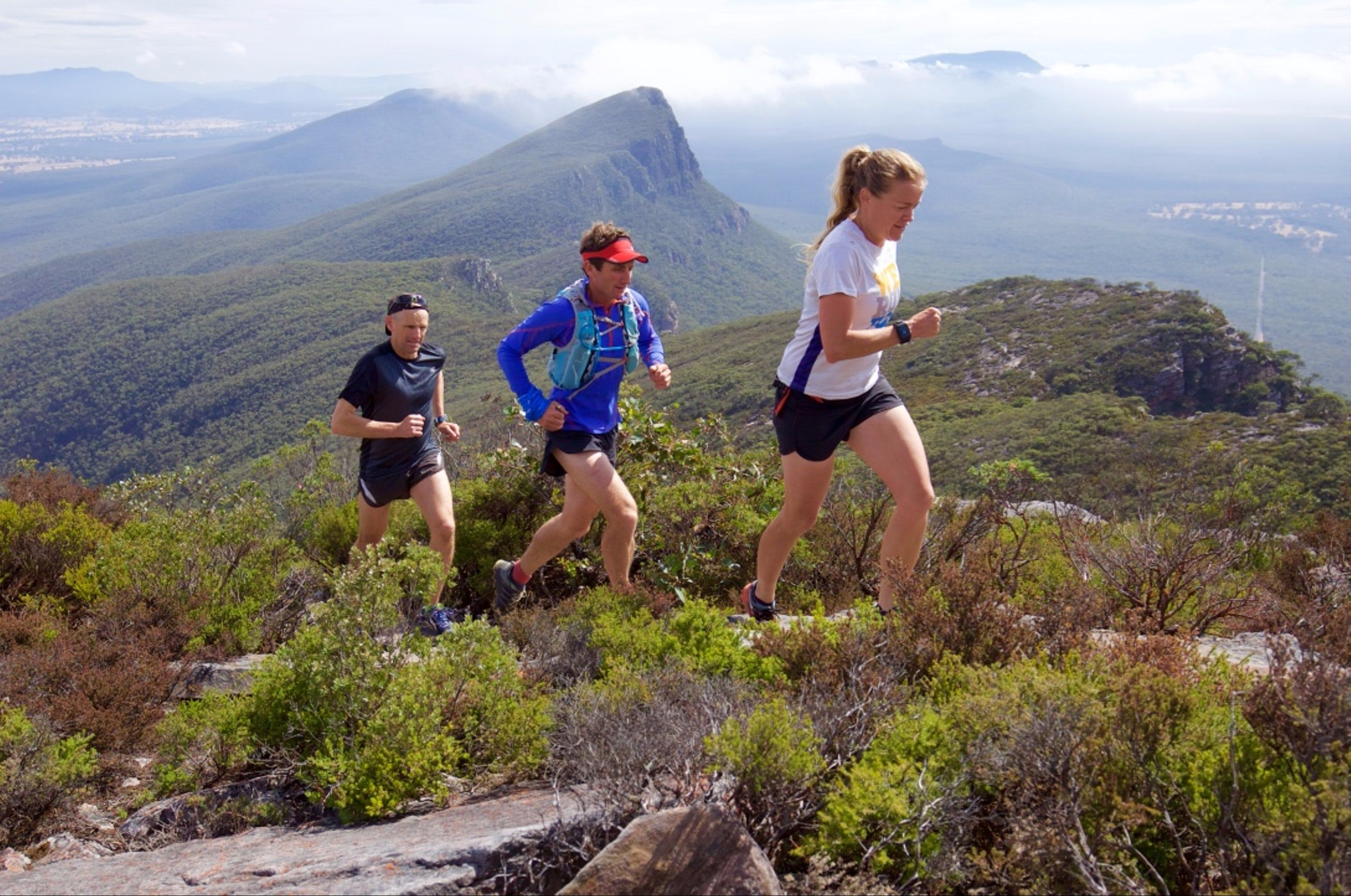 Peaks and Trails Run - Accommodation Sunshine Coast