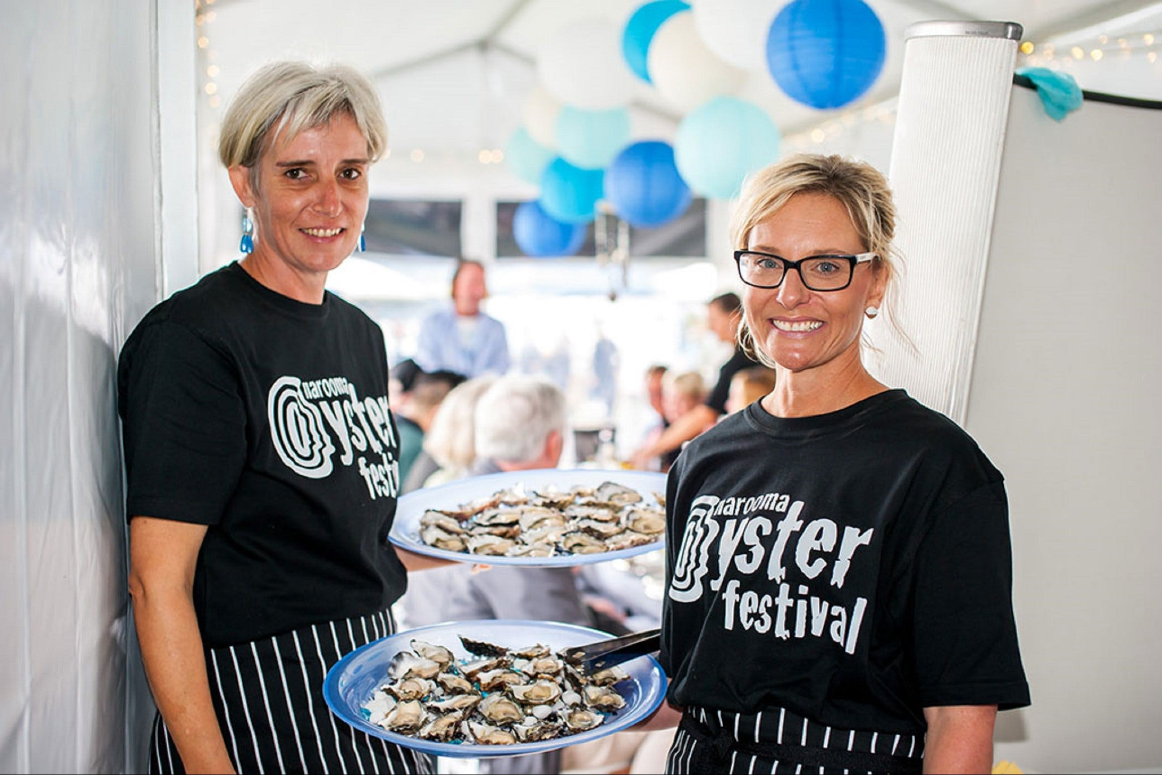 Narooma Oyster Festival - Accommodation Sunshine Coast