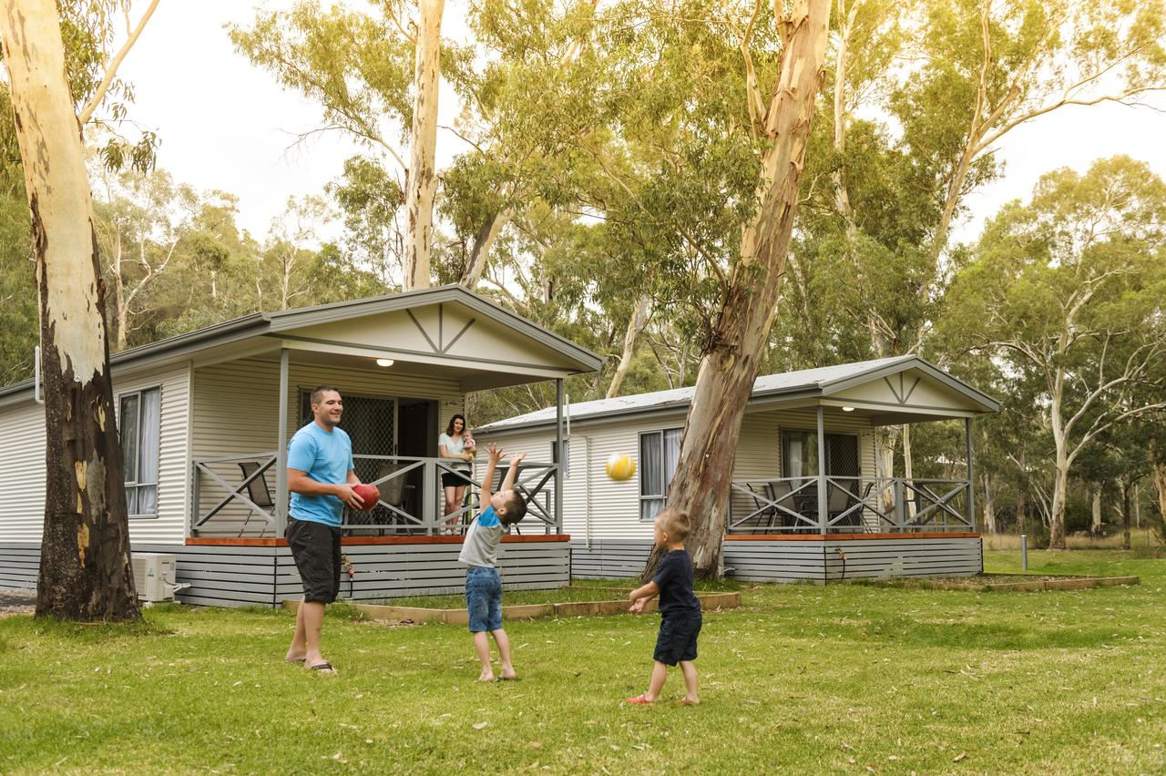 Discovery Parks  Clare - Accommodation Sunshine Coast