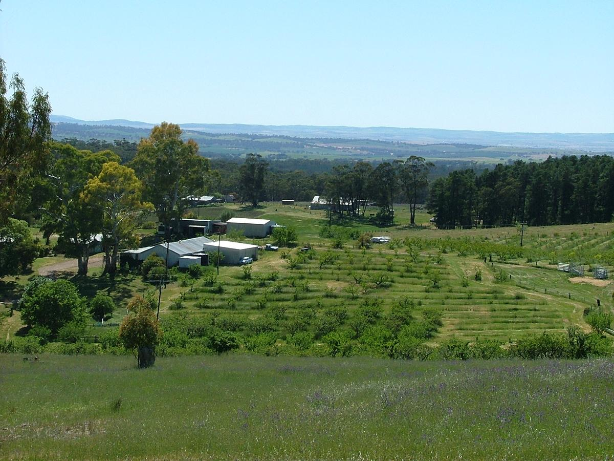 Taralee Orchards - Accommodation Sunshine Coast