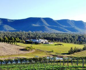 Grapevines Boutique Accommodation - Accommodation Sunshine Coast