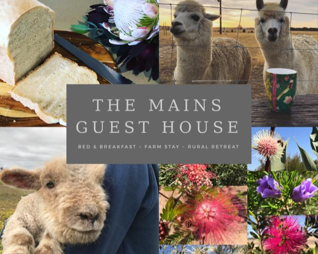 The Mains Guest House - Accommodation Sunshine Coast