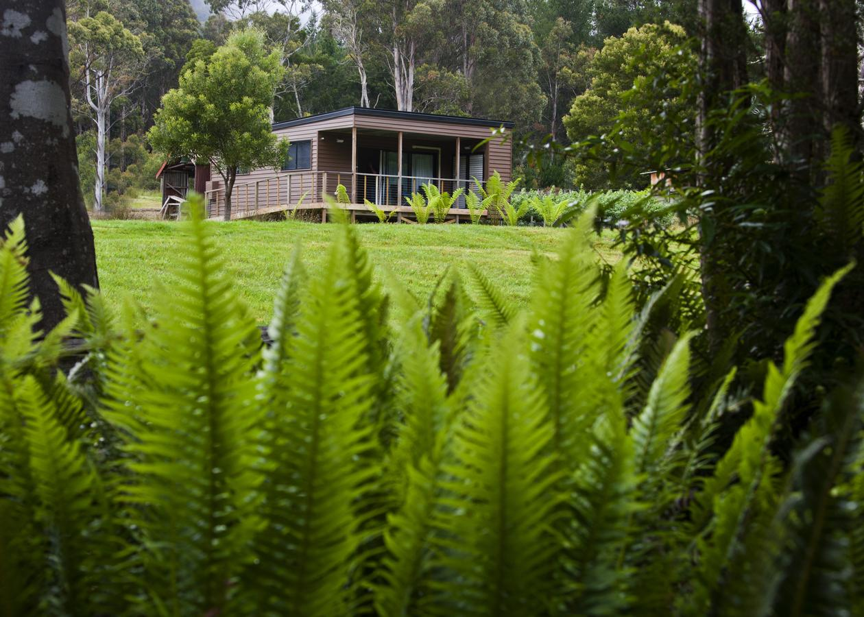 Tyenna River Cottage - Accommodation Sunshine Coast