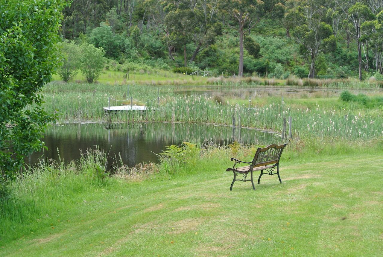 Hamlet Downs Country Accommodation - Accommodation Sunshine Coast