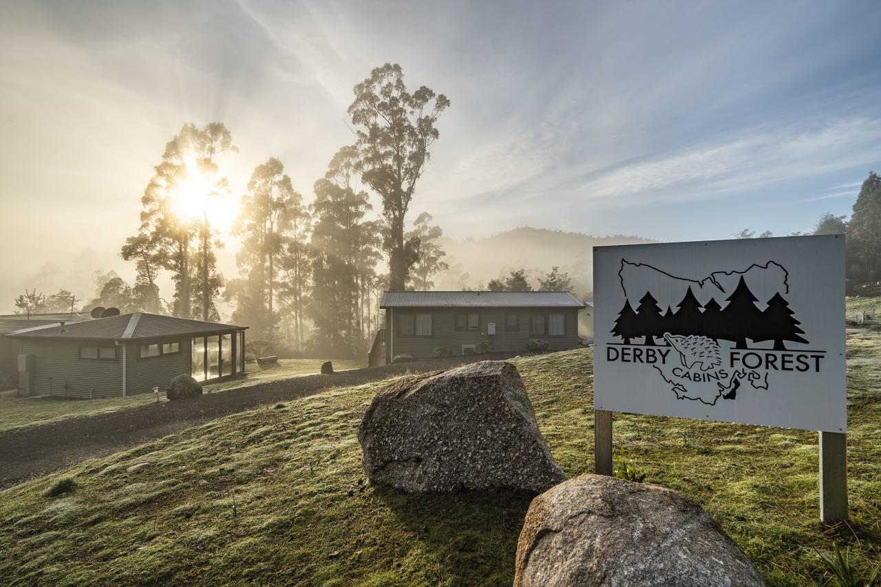 Derby Forest Cabins - Accommodation Sunshine Coast
