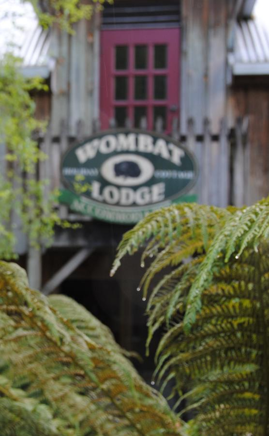The Wombat Lodge - Accommodation Sunshine Coast