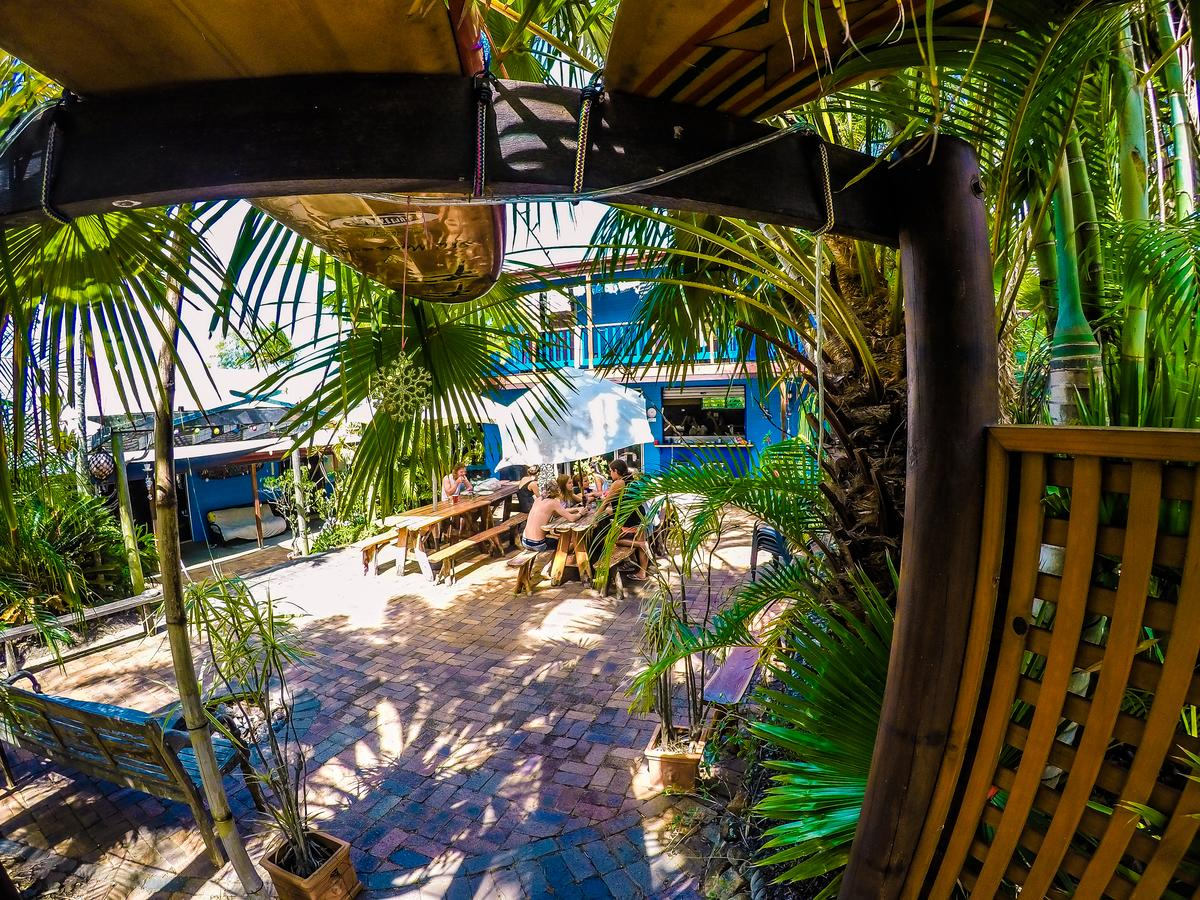 Cool Bananas Backpackers - Accommodation Sunshine Coast