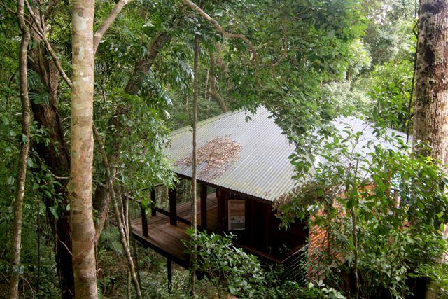 Cairns Reef  Rainforest BB - Accommodation Sunshine Coast