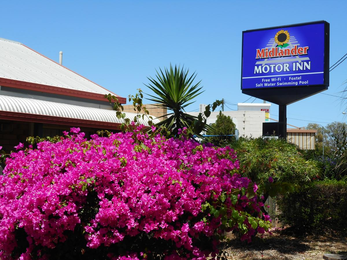 Midlander Motor Inn - Accommodation Sunshine Coast